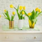 29052012-Tulipanes amarillos con marcapsd