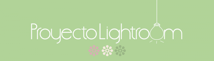 Cabecera Proyecto Lightroom