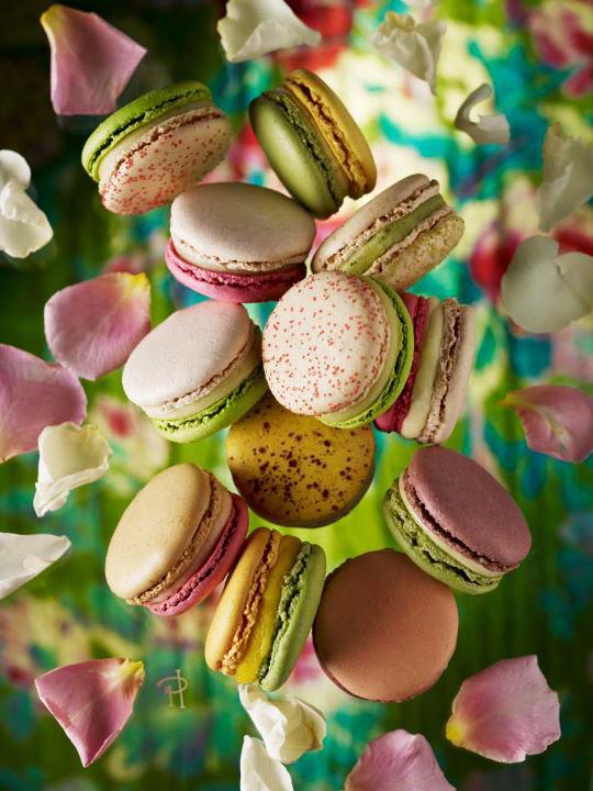 Jardins-Pierre-Herme-Macarons-Saveurs-1