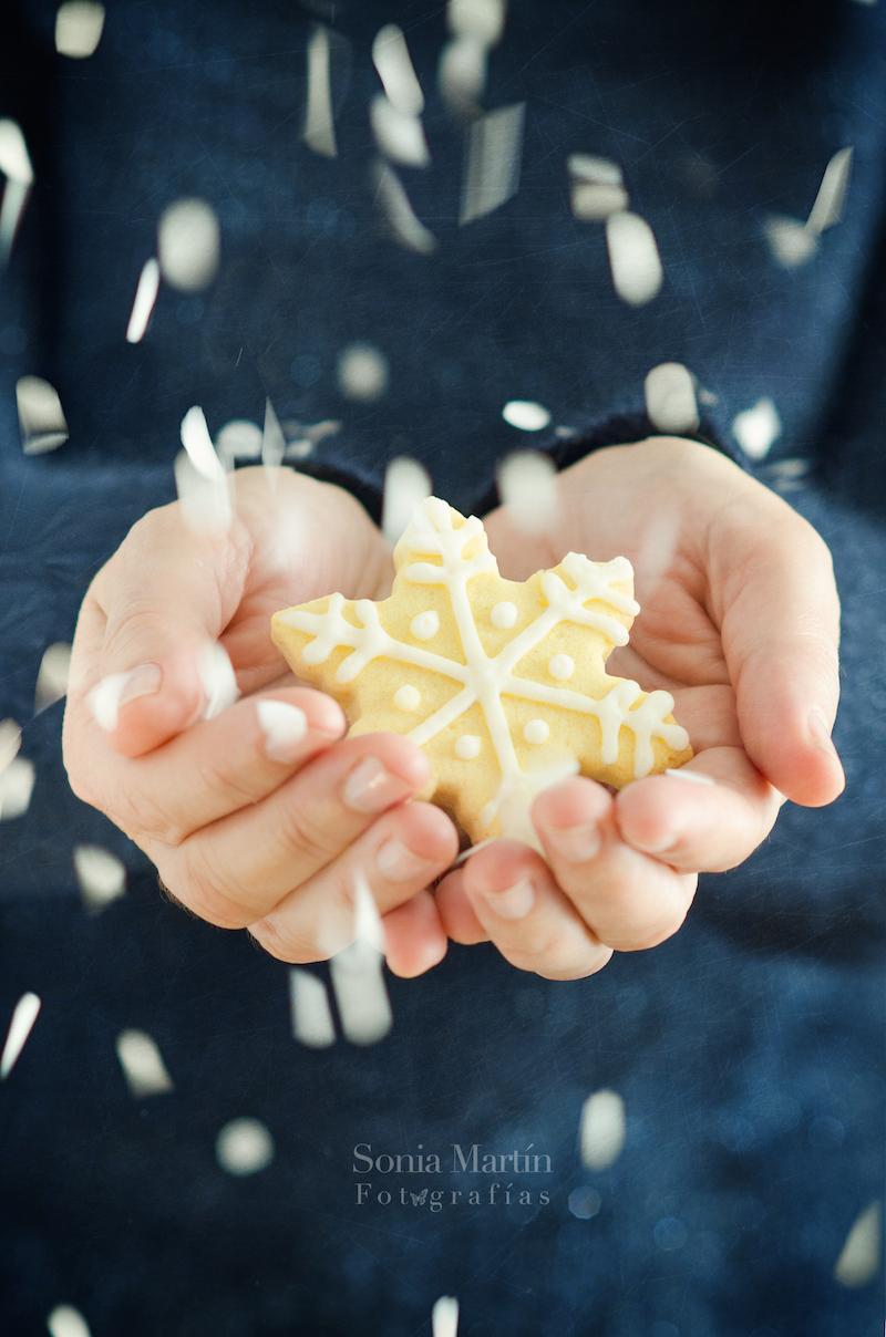 Fotografía galleta Navidad
